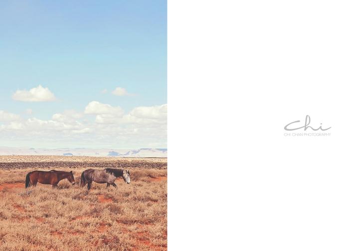 Antelope HL 015