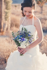 Joshua Tree Wedding Photo AK-016