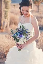 Joshua Tree Wedding Photo AK-016