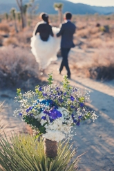 Joshua Tree Wedding Photo AK-018