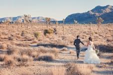 Joshua Tree Wedding Photo AK-024