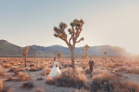 Joshua Tree Wedding Photo AK-025