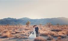 Joshua Tree Wedding Photo AK-026