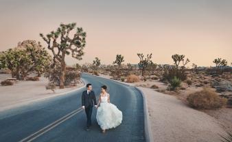 Joshua Tree Wedding Photo AK-030
