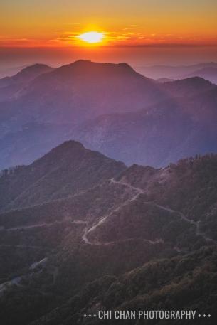 Sequoia-090